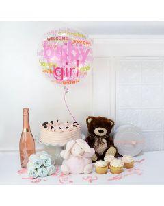 Oh Baby! Baby Girl Dessert Gift Basket