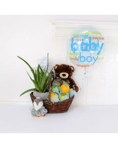 Best Wishes for Baby Gift Set, baby gift baskets, gift baskets, baby gifts